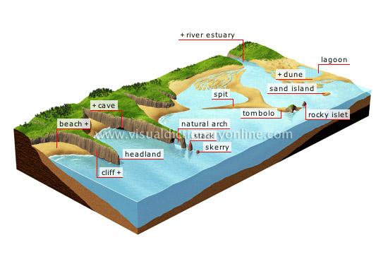 common-coastal-features