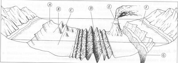 ocean-floor-diagram-worksheet