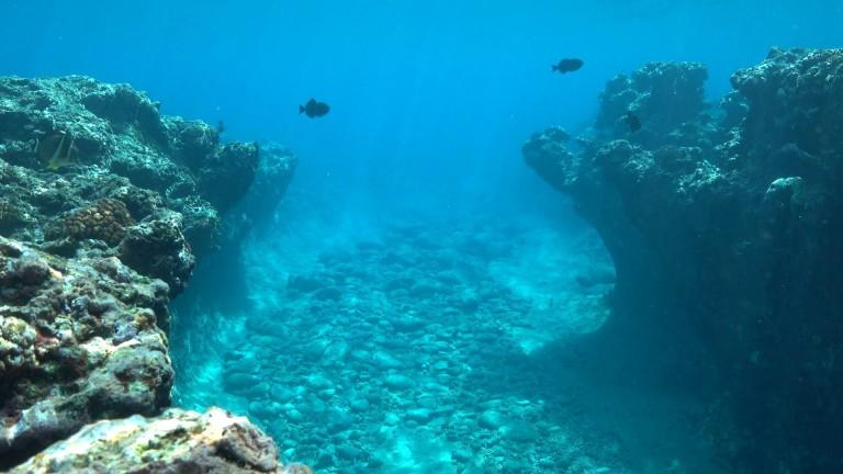 THE OCEAN FLOOR: TERRA INCOGNITA OR ELDORADO? - Krypton Ocean - Medium